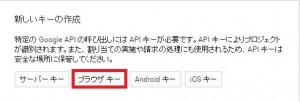 google_api33-1